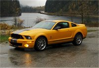 2007 Shelby GT 500 owned by Gord Phillips